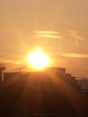 Neko201110192