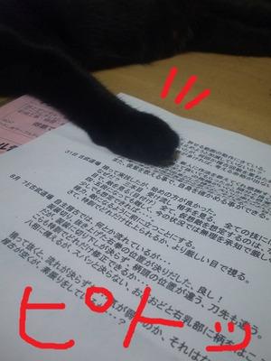 Neko201108204