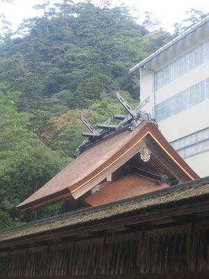 Neko201111034