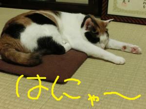 Neko201207141